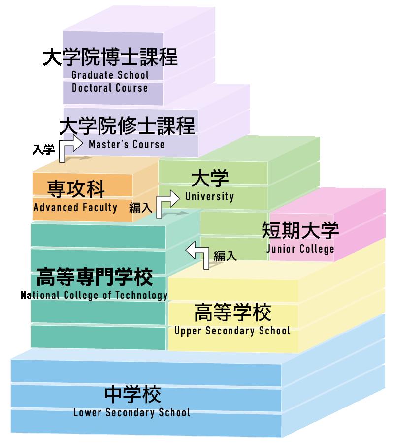 教育制度図