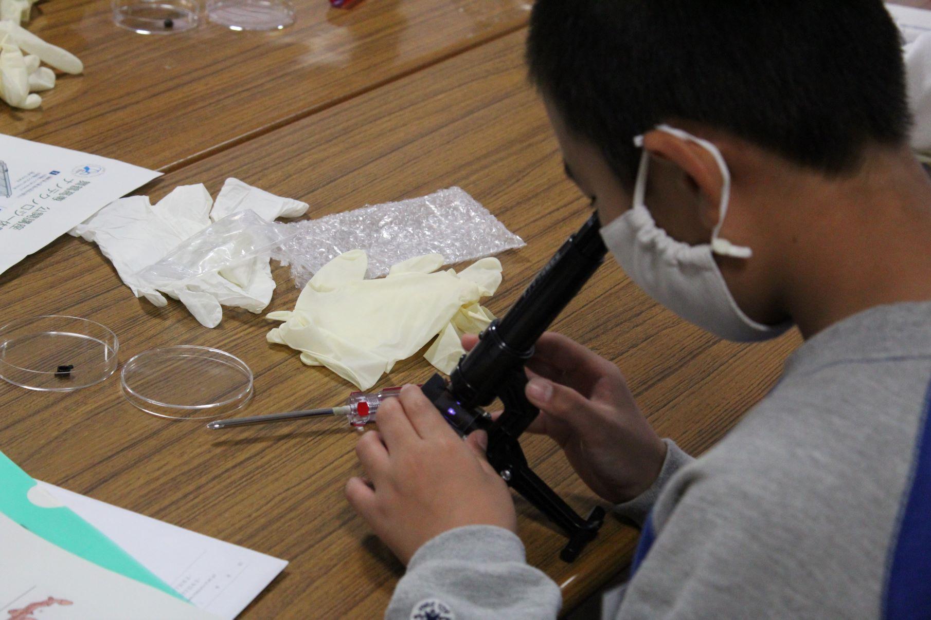 小・中学生のためのナノテクノロジー体験教室